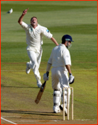 Chris Drum celebrates the wicket of Michael Vaughan.
