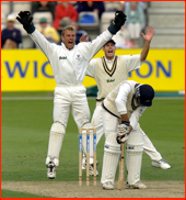 Adrian Aymes & Neil Johnson appeal, Stephen Fleming is lbw