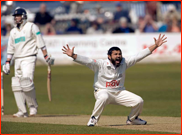 Mushtaq Ahmed appeals for the lbw of Shane Warne