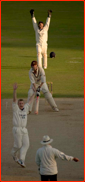 Bowler Scott Styris appeals and Rikki Clarke is lbw