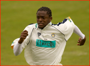 Fielder Daren Powell chases the ball to the boundary