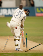Simon Cook is bowled first ball by Ottis Gibson