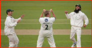 Damien Wright celebrates the wicket of Marcus Trescothick