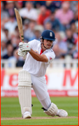 Alastair Cook during his double hundred v India, 2011