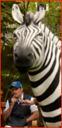 England captain Andrew Strauss and sponsors Zebra