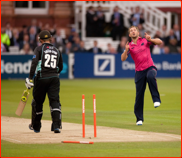 Rory Hamilton-Brown is bowled by Steven Crook, 2012