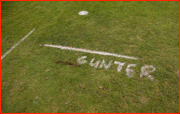 Andre Nel's alter-ego, Gunter, is sprayed on the grass at the start of his run-up